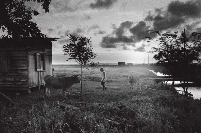 Nickerie, Surinam, 1973